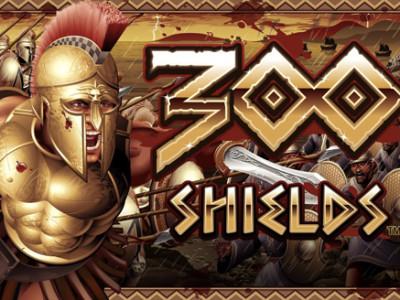 enarmad bandit 300 shields