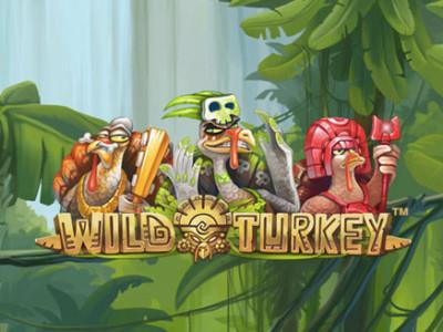 enarmad bandit wild turkey