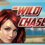 enarmad bandit wild chase