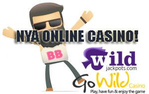 nya wild casino banditer